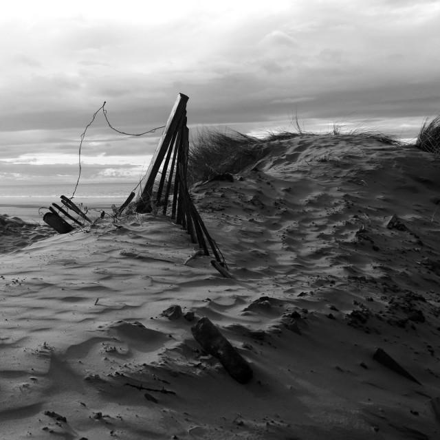 """""""Formby Point, Sefton Coast, Merseyside"""" stock image"""