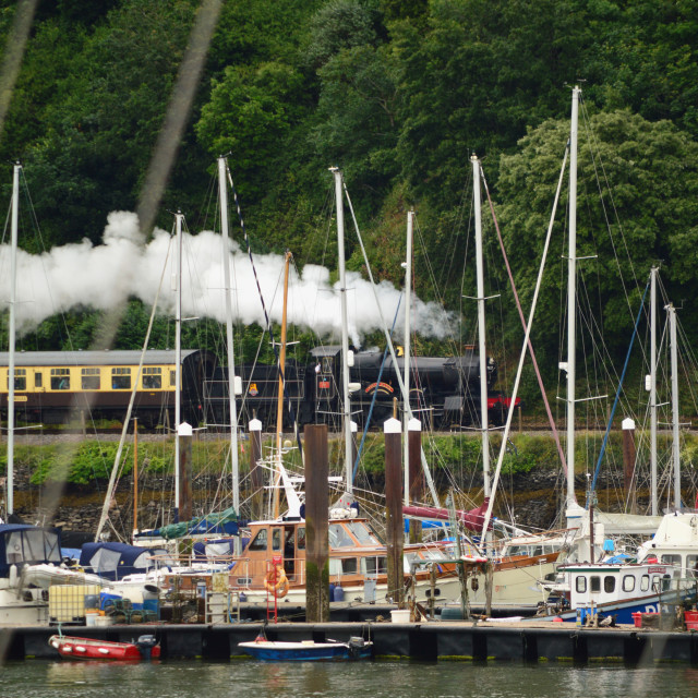 """Steam Train Lydham Manor approaching Kingswear Station"" stock image"