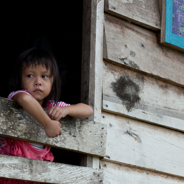 """""""Young girl looking out of her hut, Mulu, Borneo"""" stock image"""