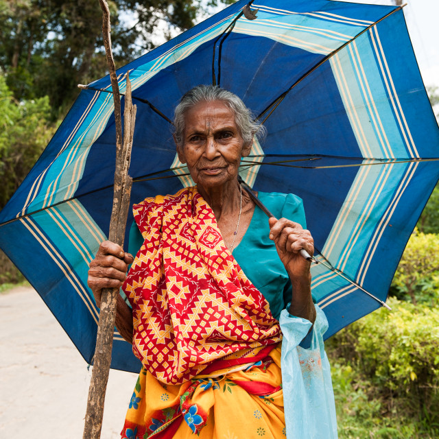 """Senior lady poses for a photo, Sri Lanka"" stock image"