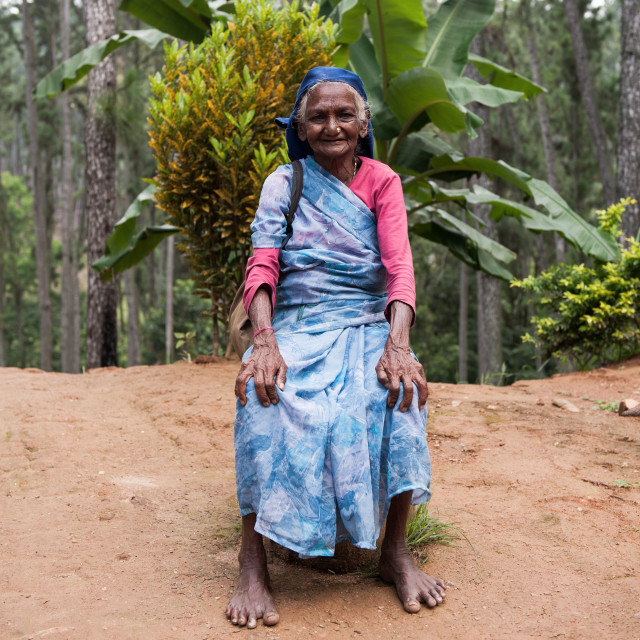 """Senior lady poses for a photo in Sri Lanka"" stock image"