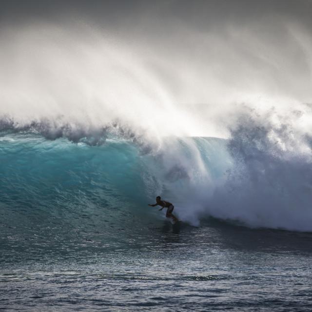 """Shadow Surf"" stock image"
