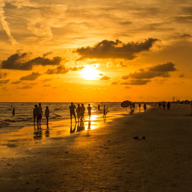 """Beachlife"" stock image"