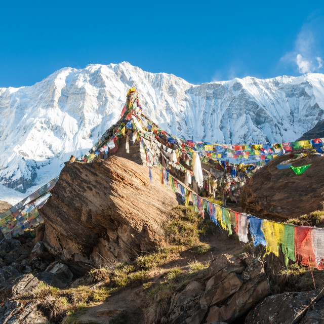 """Prayer flags and mountains, AnnaPurna Base Camp, Himalayas, Nepal"" stock image"