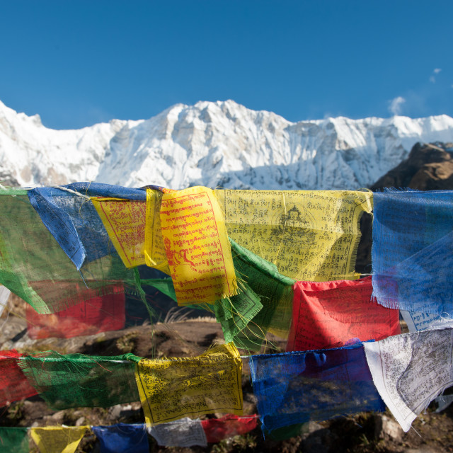 """Prayer flags and mountains, Annapurna, Nepal"" stock image"