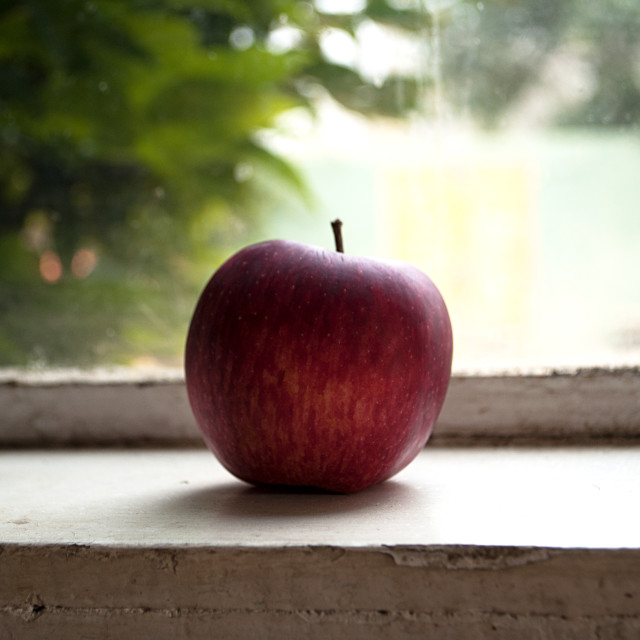 """Window apple"" stock image"