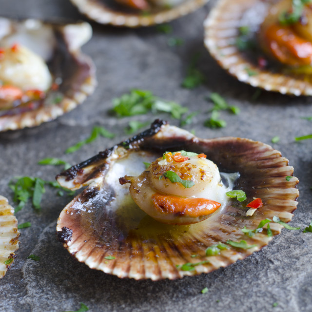 """""""Scallops with chilli"""" stock image"""