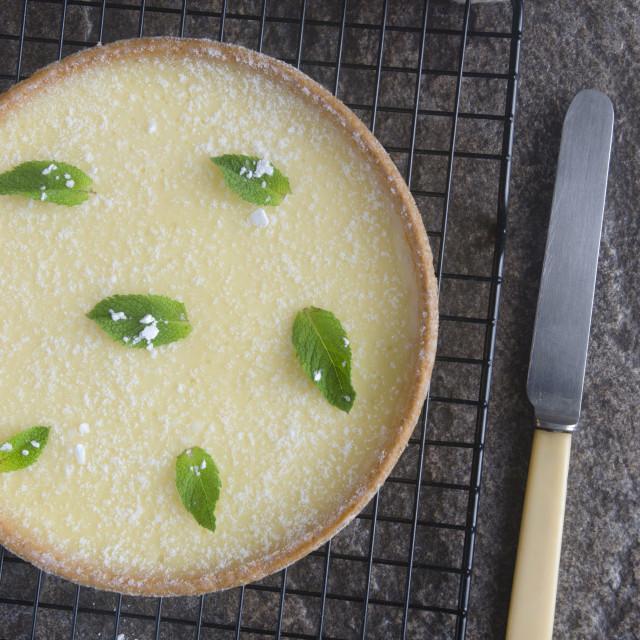 """Sicilian lemon tart"" stock image"
