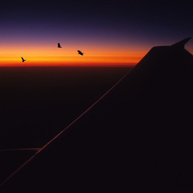 """Boeing Sunset"" stock image"