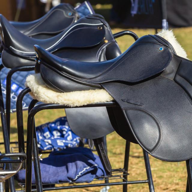 """Saddles Equestrian Equipment"" stock image"