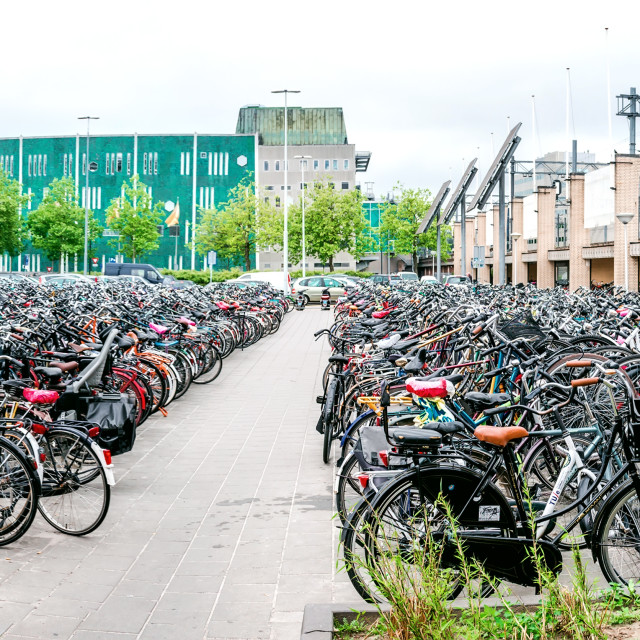 """""""Bicycle parking area in Eindhoven Central Station"""" stock image"""