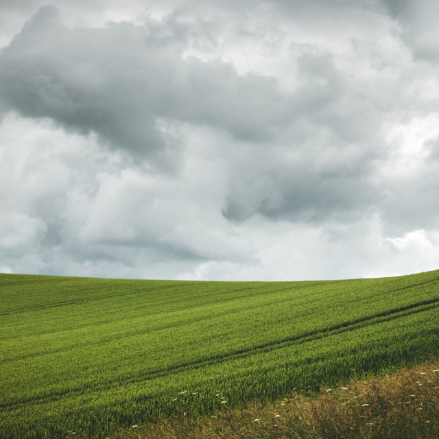 """Fields"" stock image"