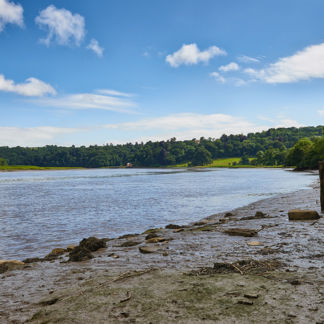 """The River Tamar at Halton Quay"" stock image"