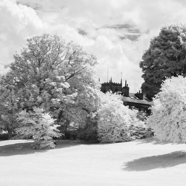 """Monochrome infrared trees, church, trees and family."" stock image"