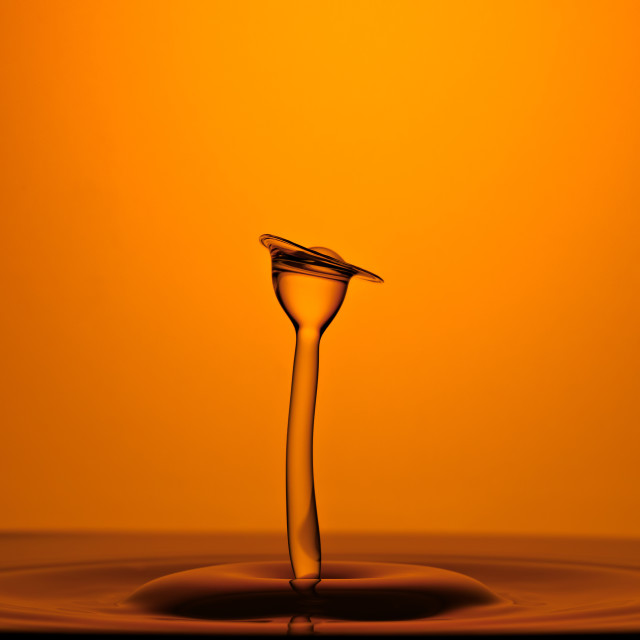"""Water Drop Collision Macro, Amber Background"" stock image"