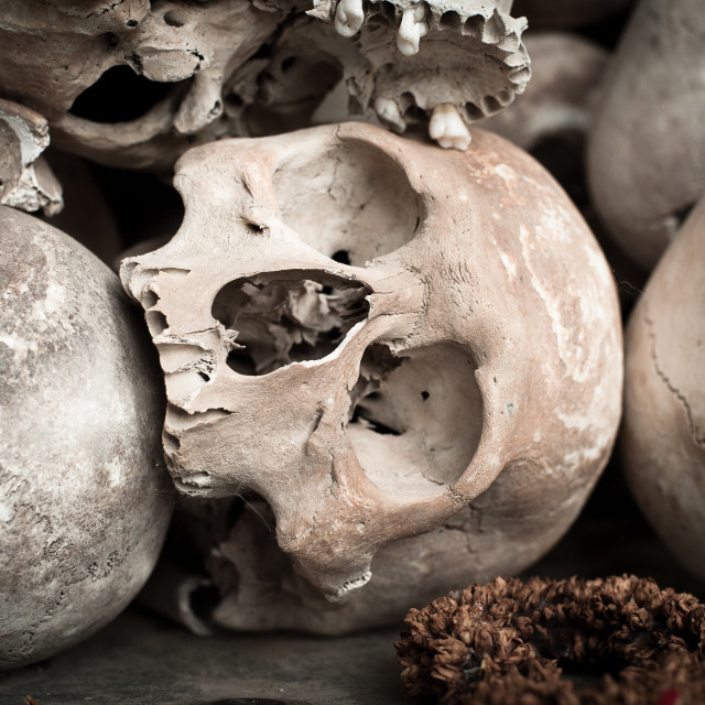 """Skulls on display at the Killing Fields, Cambodia"" stock image"