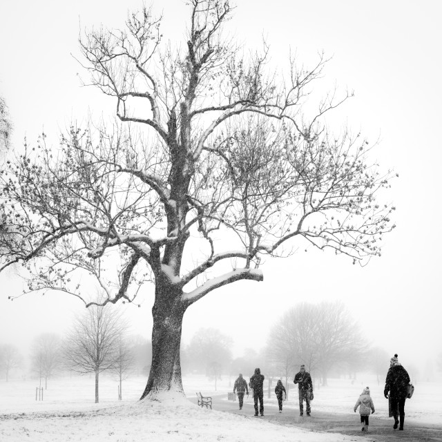 """Snow scene, Herne Hill Park, London"" stock image"