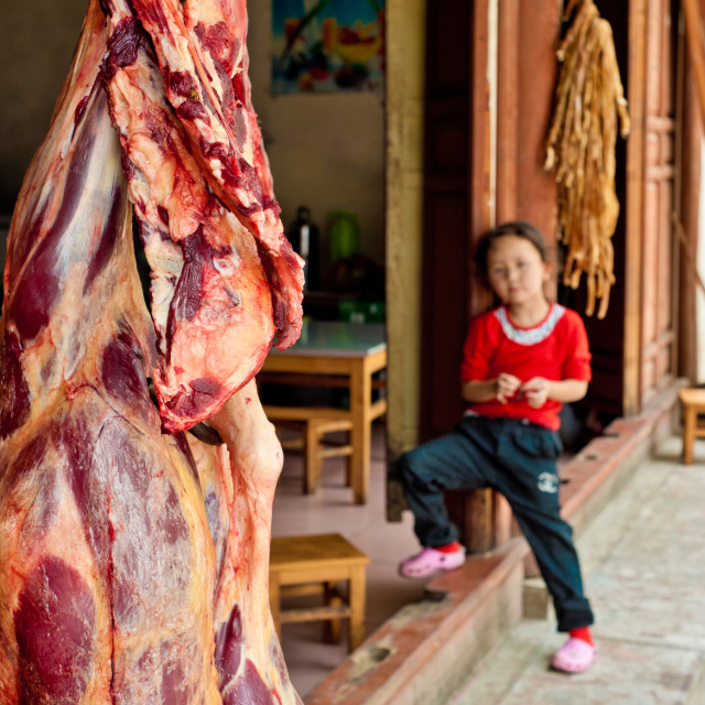 """Hanging meat, Beijing, China"" stock image"