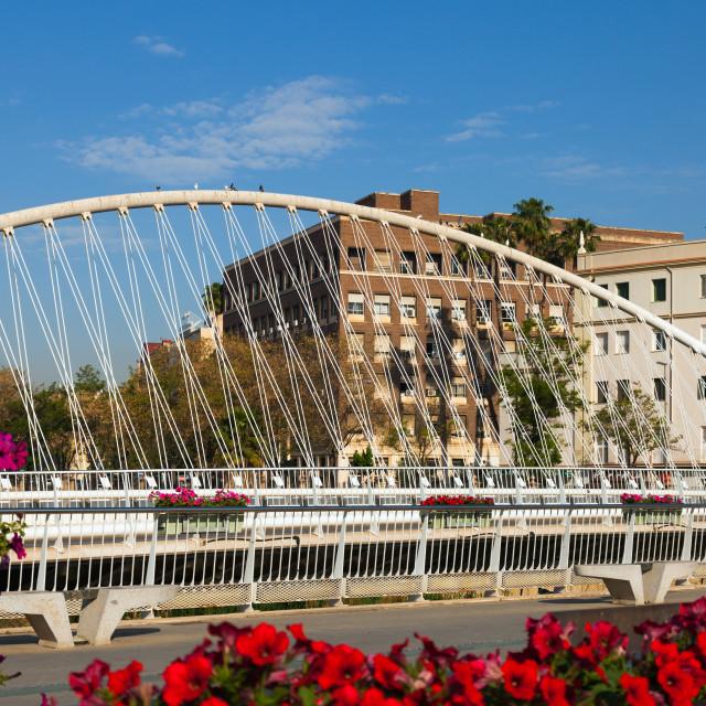 """View of Murcia. Bridge over Segura"" stock image"