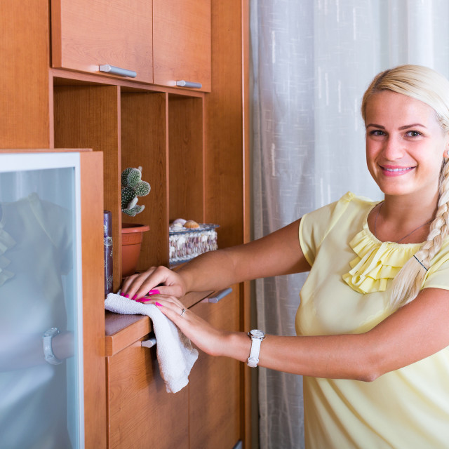 """""""Housewife dusting furniture at home."""" stock image"""