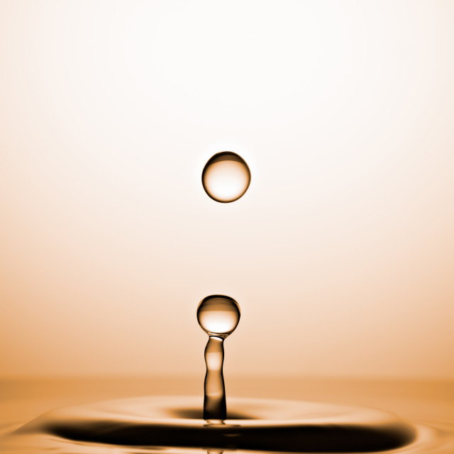 """Water Drops Captured before Collision. Macro, Golden background"" stock image"