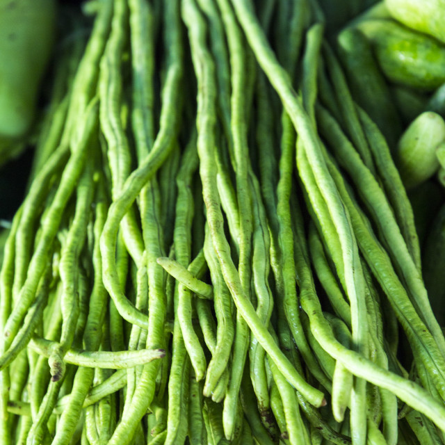 """Thai yard long beans"" stock image"