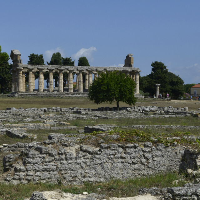 """Paestum, Archeological site."" stock image"
