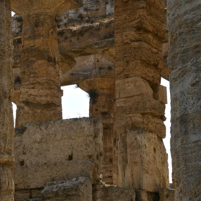 """Paestum, Neptune's temple."" stock image"