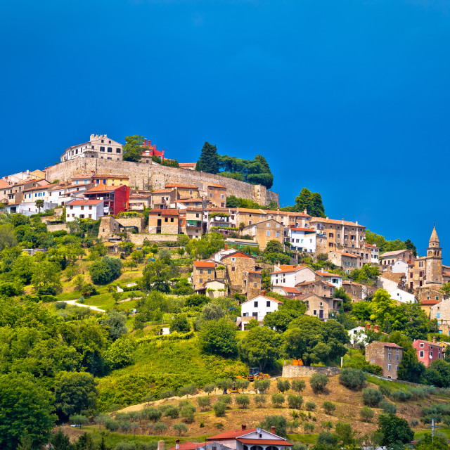 """Town of Motovun on picturesque hill"" stock image"
