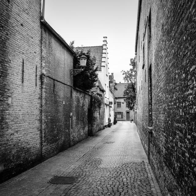 """Bruges Side Street Black and White"" stock image"