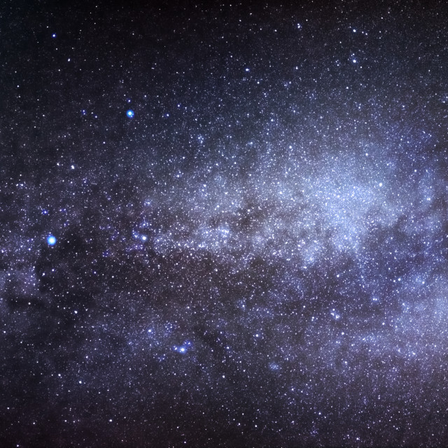 """""""Swan In The Milky Way"""" stock image"""