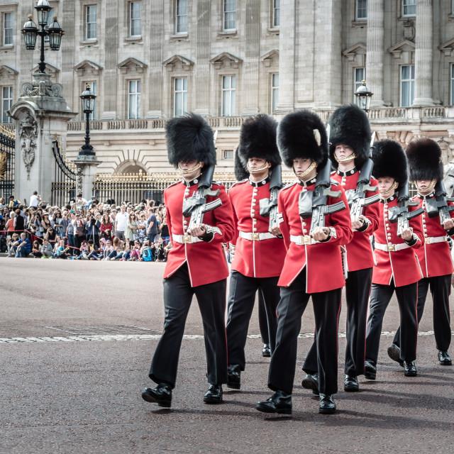 """""""Royal Guard Parade"""" stock image"""