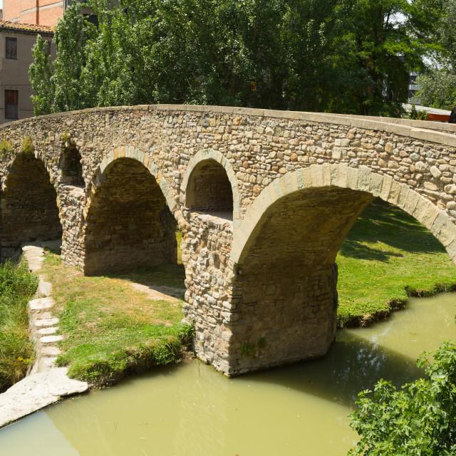"""""""Old stone bridge in Vic"""" stock image"""