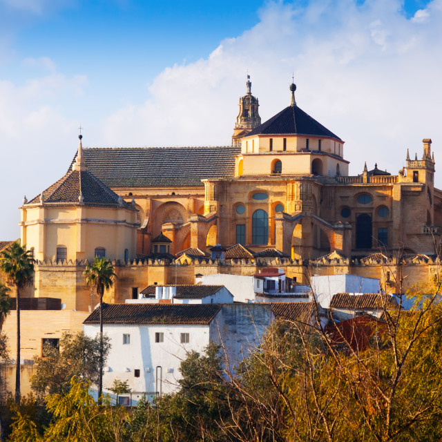 """Cathedral of Cordoba"" stock image"