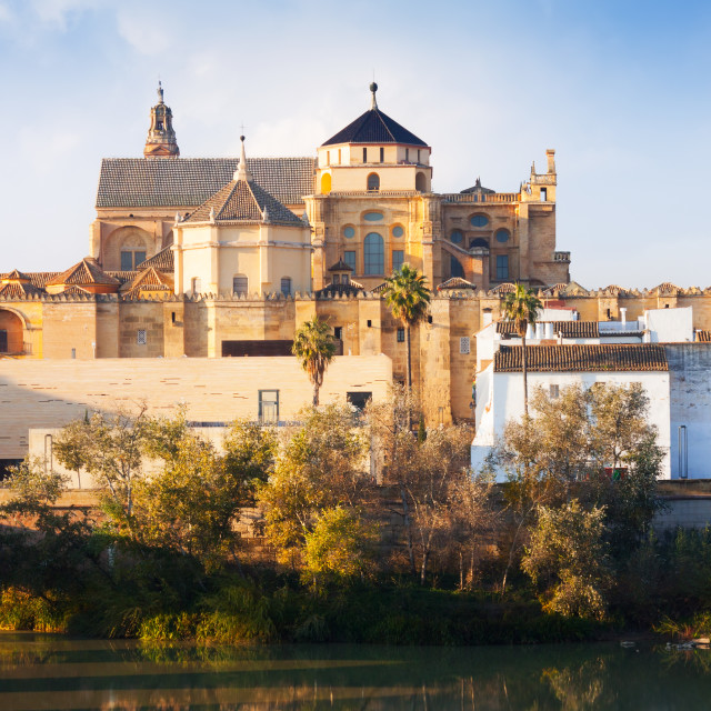 """The Mosque-cathedral of Cordoba"" stock image"