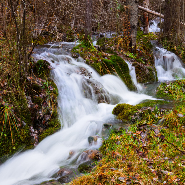 """""""Mountains stream with moss stones at forest"""" stock image"""