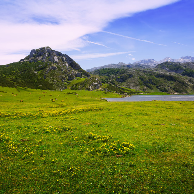 """""""mountains landscape with lake and pasture."""" stock image"""