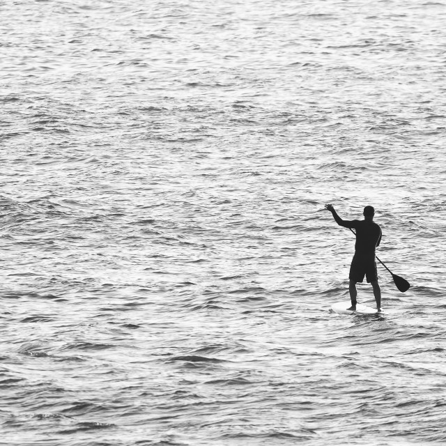 """""""Man on Stand Up Paddle Board"""" stock image"""