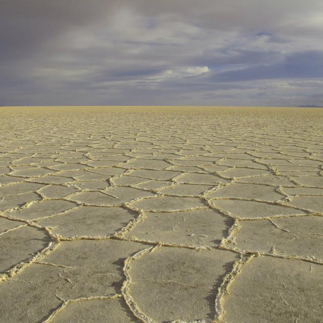"""""""Golden salt desert"""" stock image"""