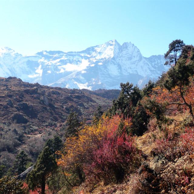 """""""Himalaya autumn 2"""" stock image"""