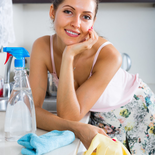 """""""housewife cleaning on the kitchen"""" stock image"""
