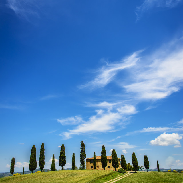 """""""the way to the sky"""" stock image"""