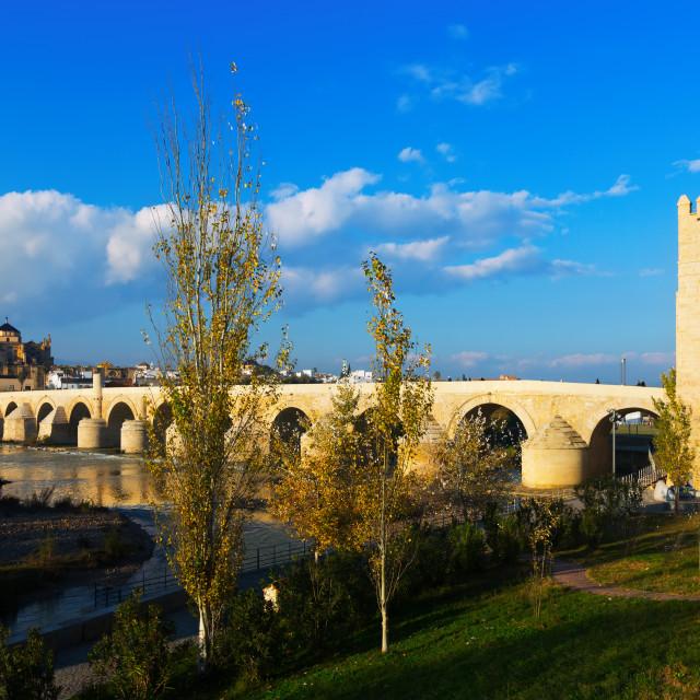 """Roman bridge of Cordoba"" stock image"