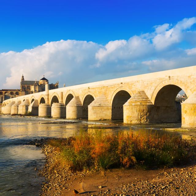"""""""Roman bridge over Guadalquivir river in Cordoba"""" stock image"""