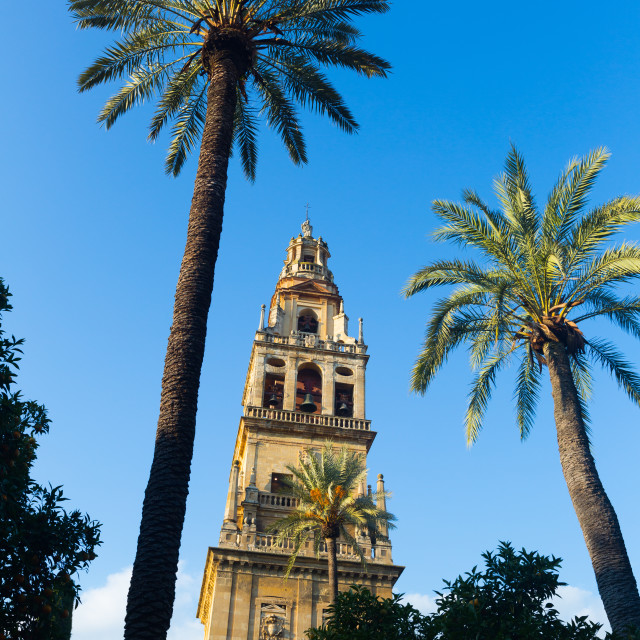 """Bell tower of Cordoba Cathedral"" stock image"