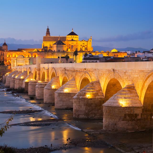 """Roman bridge over river in evening. Cordoba"" stock image"