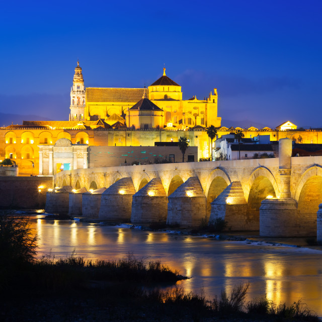 """Bridge and Mosque-cathedral of Cordoba in evening"" stock image"
