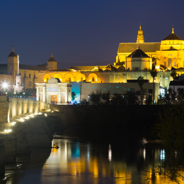 """""""Old roman bridge and Mosque-cathedral of Cordoba"""" stock image"""
