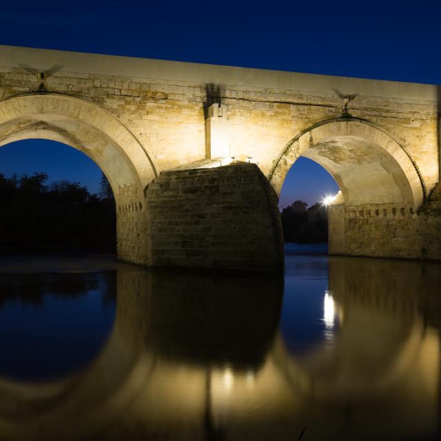 """Roman bridge in evening"" stock image"