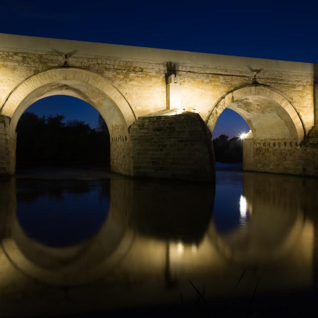 """""""Ancient roman bridge"""" stock image"""